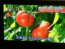 2018.3.29放送 あさイチ